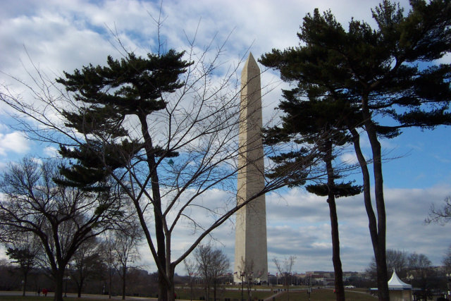 The Washington Monument behind some trees.