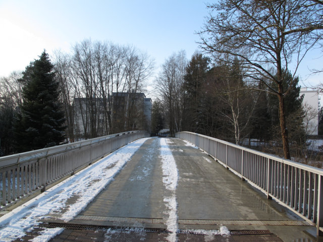 A pedestrian bridge, iced over, connecting a group of apartment buildings to a grocery store.