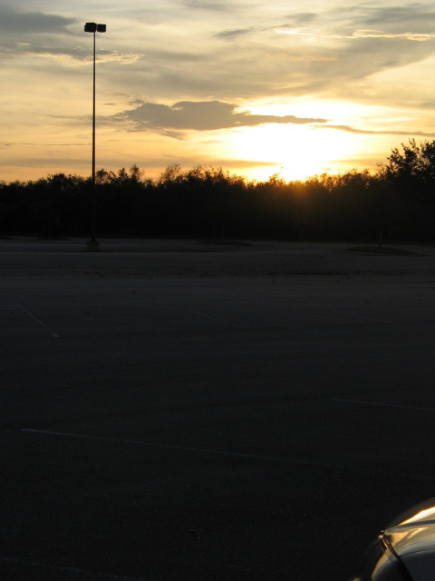A sunset, parking lot, trees.