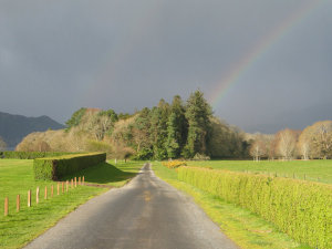 A rainbow landing at the end of a path, near Muckross House.